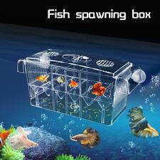 Scatola Isolamento Camera Vasca Allevamento Divisorio Incubatric Acquario Pesci