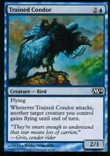 4x trained Condor   NM/M   m14   Magic MTG