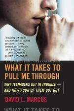 What It Takes To Pull Me Through: Why Teenagers Get in Trouble and How-ExLibrary