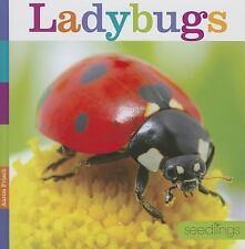 Ladybugs Hardcover Aaron Frisch