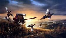 "Terry Redlin ""Evening Surprise "" Pheasant Farm Art Print 18"" x 10.5"""