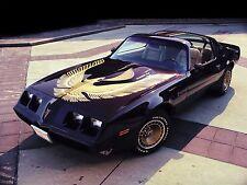 1981 Pontiac Trans Am black gold qtr, 24 x 36 Inch Poster, formula, 6.6 engine