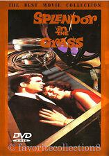 Splendor in the Grass (1961) - Natalie Wood, Pat Hingle - DVD NEW