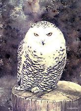 Snowy Owl GREETINGS CARD Bird of Prey Steve Greaves Wildlife Art Card Painting