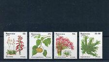 Botswana 1993 MNH Christmas Flora 4v Set Plants Aloe Euphorbia