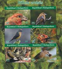 More details for madagascar 2021 mnh birds on stamps crossbills crossbill 6v impf m/s ii