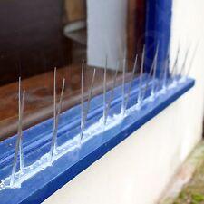 Bird Pigeon Plastic Spikes 5m Deterrent Anti Birds Control Repeller Narrow