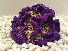 Purple/Yellow Replica Cabbage Coral-Aquarium Nautical Decor- US Seller-Fast Ship