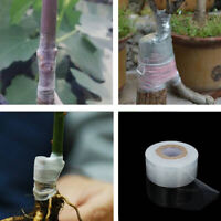 100m Flower Nursery Grafting Tape Garden Tool Self-adhesive BIO-degradable New