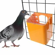 Pigeon Feeder Water Feeding Plastic Food Dispenser Parrot Container Supplies