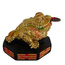 Feng Shui Golden Money Frog on BaGua