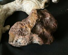 Taxidermy Habitat Base Display Stone,Reptile Basking,Perching Natural Jasper