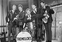 The Tremeloes 11x17 Mini Poster Brian Poole Dave Munden group pose