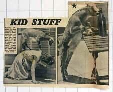 1952 Mr Mrs George Nandor Wahroonga Sydney Australia Simon Pet Goat