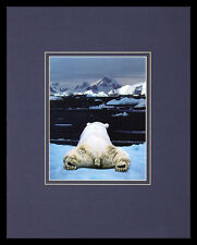 Art Wolfe dream of a Polar Bear Poster Picture Art Print in Aluminium Frame 50x40cm