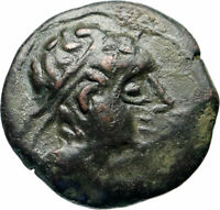 CASTULO Spain 2nd Century BC Male Bull Authentic Ancient Greek Coin  i46574