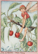 Flower Fairies: THE CHERRY TREE FAIRY Vintage Print c1930 by Cicely Mary Barker