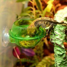 Reptile Feeder Food Water Container Worm Bowl Cup Terrarium Lizard Pet Supplies