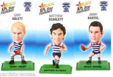 2008 Select AFL Color Figurine picture card Team Set Geelong (3)