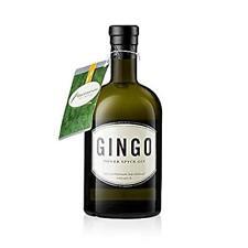 Gingo Power Spyce Gin 0,5l, alc. 43 Vol.-%, Gin Deutschland