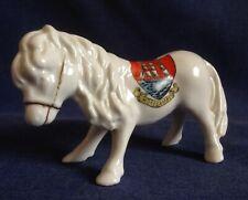 Gemma. Crested China. Morecambe. Shetland Pony.