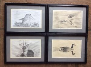 Set 4 Framed Glazed Pencil Sketches Drawings Birds Wildlife Signed And Dated 91
