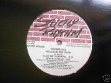 """ROOMMATES - Voices In The Dark - 12"""" US PRESSING"""