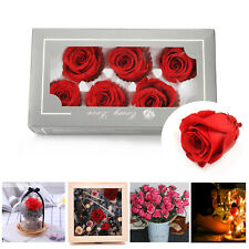 Immortal Preserved Fresh Rose Flower 100% Natural Wedding Valentine's Day Gift