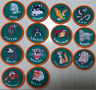 Jungle Book Badges - Ideal for Scouts, Cubs, Beavers.  COMPLETE SET AS SHOWN