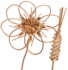 DISCOVER WILLOW FLOWERS KIT