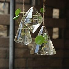 3 Pieces of Hanging Glass Plant Pot Air Plant Containers Hanging Planters Set
