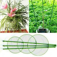 3 Ringe Kletterpflanze Stützkäfig Garten Spalier Blumen 45cm Tomatenständer