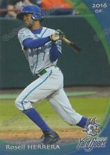 2017 Hartford Yard Goats Rosell Herrera RC Rookie Colorado Rockies