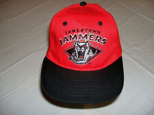 Jamestown Jammers Defunct Minor League Baseball Hat MiLB YOUTH Adjustable Red