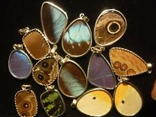 Large Morpho Butterfly pendant, REAL BUTTERFLY WINGS, perspex encased, 925