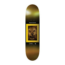 "Element Skateboard Deck Nyjah National Geographic Kings 8.1"""