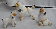 VINTAGE STANDARD POODLE DOGS 3 JAPAN BONE CHINA MINIATURE RARE