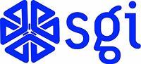 "SGI - Silicon Graphics LOGO VINTAGE - 6.75"" X 3"" - SET OF 2 - BLUE"