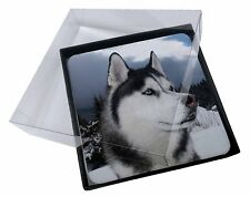 4x Siberian Husky Dog Picture Table Coasters Set in Gift Box, AD-H52C