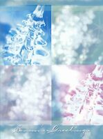 """Boxed Christmas Cards Ice Crystals Design, 4"""" x 6"""", 16 Cards and 17 Envelopes"""