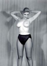 1960s Tall Nude Pinup Huge Breasts in Fishnets  8 x 10  Photograph