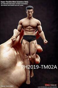 Phoenix tbleague tm01a tm02a 1 / 12 head sculpting muscle, male voxel, movable