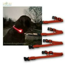 Dog Collar with LED Lighting, 4 Sizes the Choice, Luminous for Night