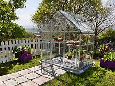 Maze 6 x 4 greenhouse RRP - $899 Sale - $711 Inc Free Shipping