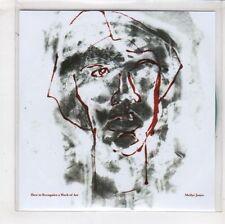 (HA468) Meilyr Jones, How To Recognise A Work Of Art - DJ CD