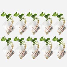 2/4/8/12/20X Wall Hanging Air Plant Terrarium Glass Diamond Planter Pots Vase