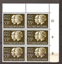 Nederlands Nieuw Guinea - 1962 - NVPH 75 (Blok van 6) - Postfris - LB707