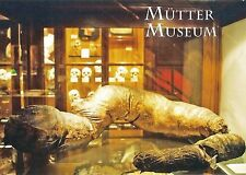Postcard Philadelphia Mutter Museum PA College of Physicians Giant Colon MINT