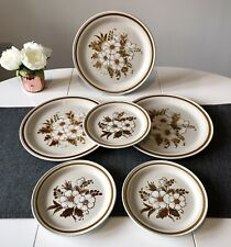 Vintage Mountain Wood Collection Dried Flowers Dinner Plates Set of 6