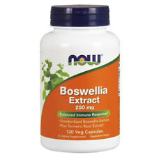 Boswellia Extract 120 Caps 250 mg by Now Foods
